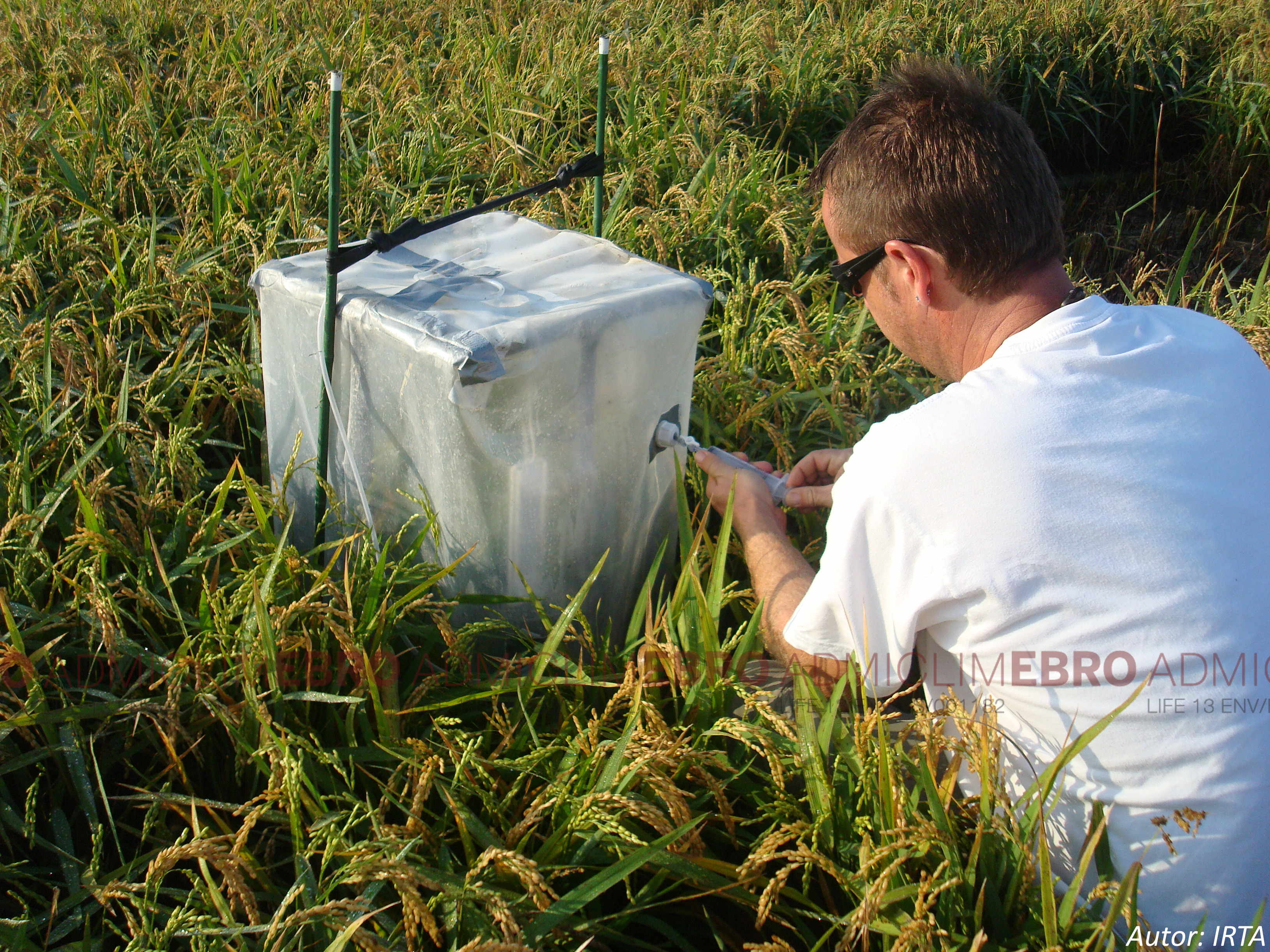 B4.- Optimization of greenhouse gases emissions in the rice fields of the Ebro Delta.